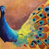 Peacock Shimmer